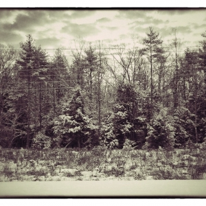 SIJ Day 17 - Morning Snow, New Hampshire