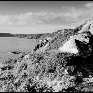 NW from Gammon Head towards the Salcombe/Kingsbridge estuary