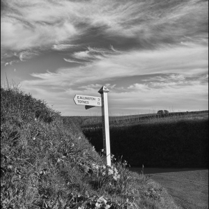 Signposted cirrus