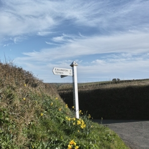 Signpost to spring