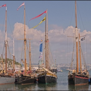 Masts in Brixham